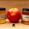 Little Wren Farm Seasonal Honey Sampler