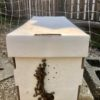 5-frame nuc box with lid and bearding bees